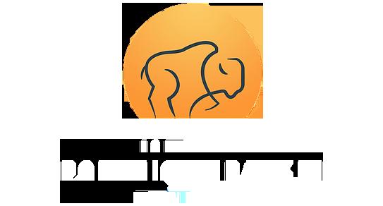 logo_fondation_dominique_rankin copie